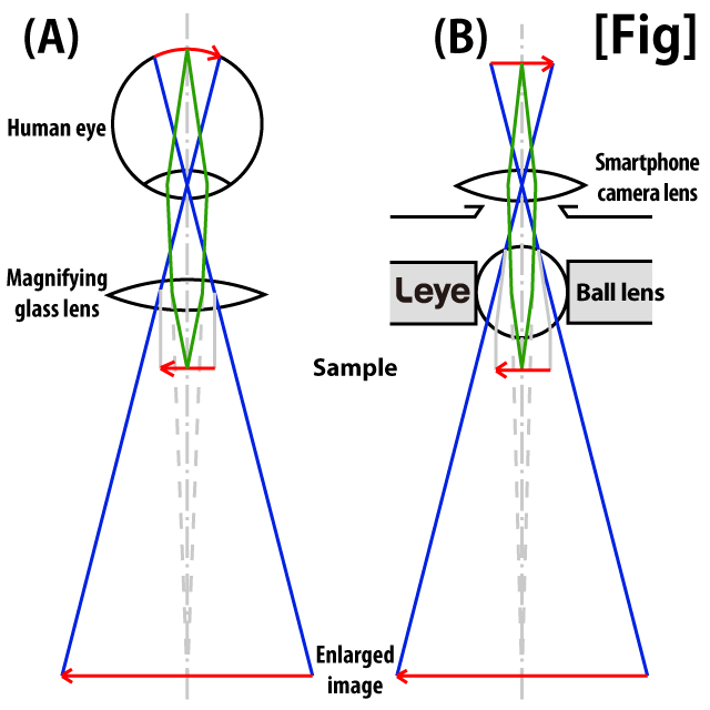 Extended principle of L-eye