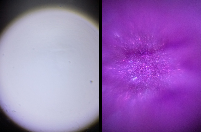 2. Tabletop spotlight : an image for no samples(left) / an image for some samples(right)